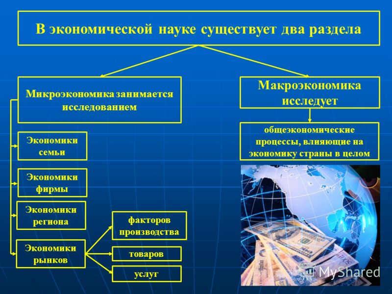 В экономической науке существует два раздела Микроэкономика занимается исследованием Макроэкономика исследует Экономики семьи общеэкономические процессы, влияющие на экономику страны в целом Экономики фирмы Экономики региона Экономики рынков факторов