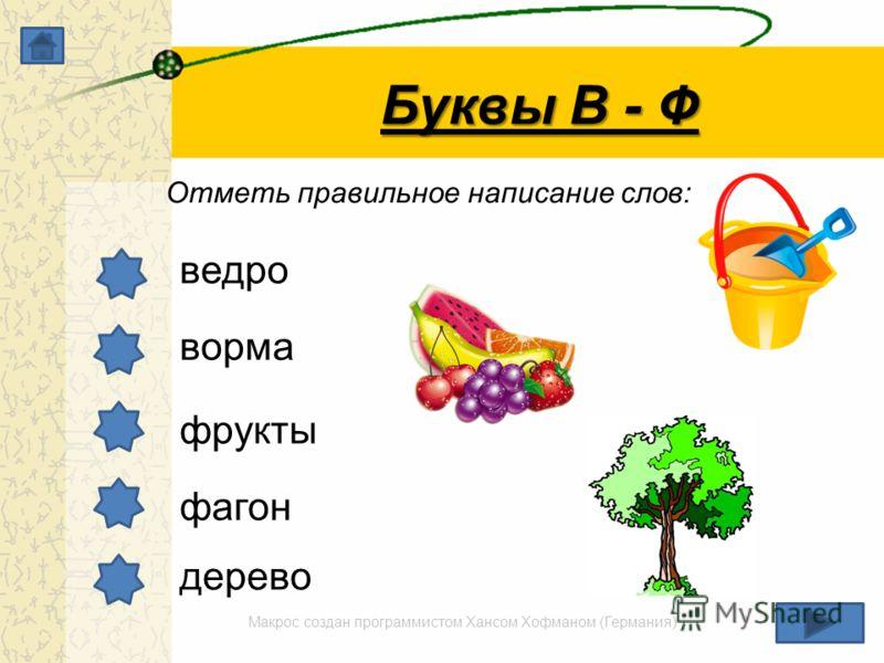 Макрос создан программистом Хансом Хофманом (Германия) Буквы В - Ф Отметь правильное написание слов: ведро ворма фрукты фагон дерево