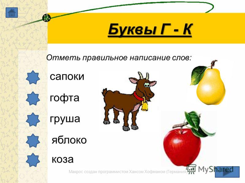 Макрос создан программистом Хансом Хофманом (Германия) Буквы Г - К Отметь правильное написание слов: сапоки гофта груша яблоко коза