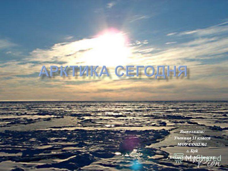 Выполнила : Ученица 11 класса МОУ СОШ 1 г. Буй Белюскина Анастасия