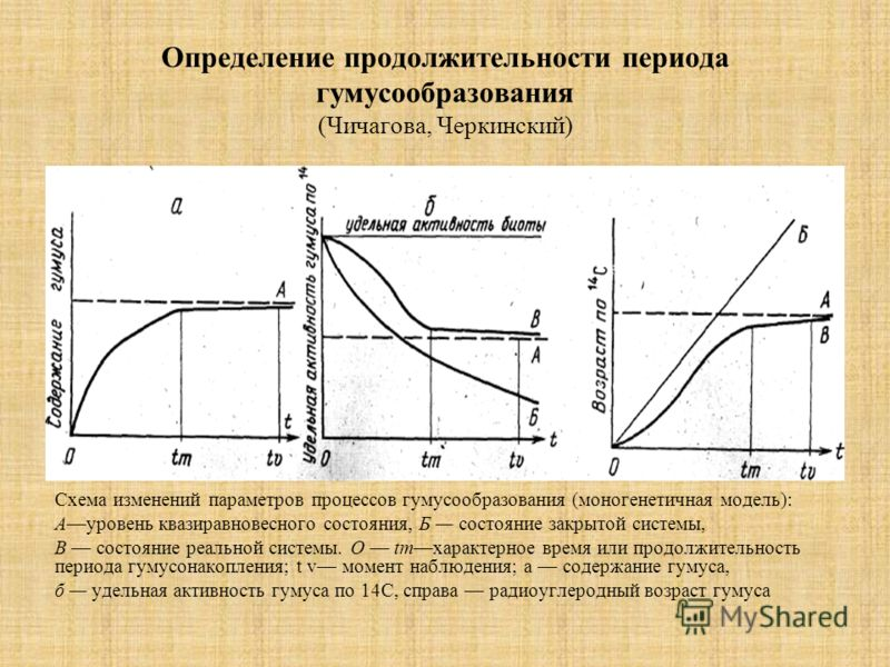 Определение продолжительности периода гумусообразования (Чичагова, Черкинский) Схема изменений параметров процессов гумусообразования (моногенетичная модель): Ауровень квазиравновесного состояния, Б состояние закрытой системы, В состояние реальной си