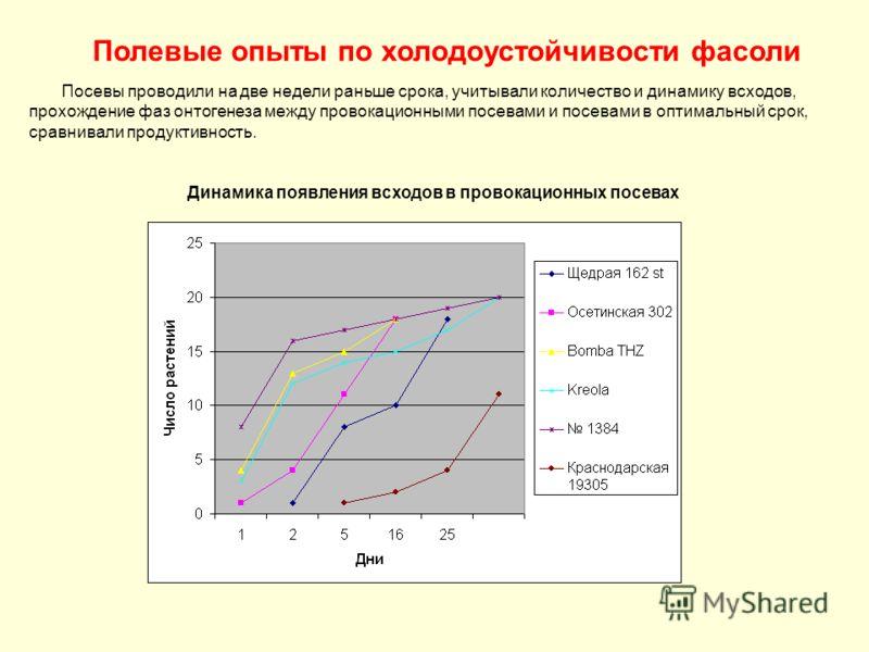 Полевые опыты по холодоустойчивости фасоли Посевы проводили на две недели раньше срока, учитывали количество и динамику всходов, прохождение фаз онтогенеза между провокационными посевами и посевами в оптимальный срок, сравнивали продуктивность. Динам
