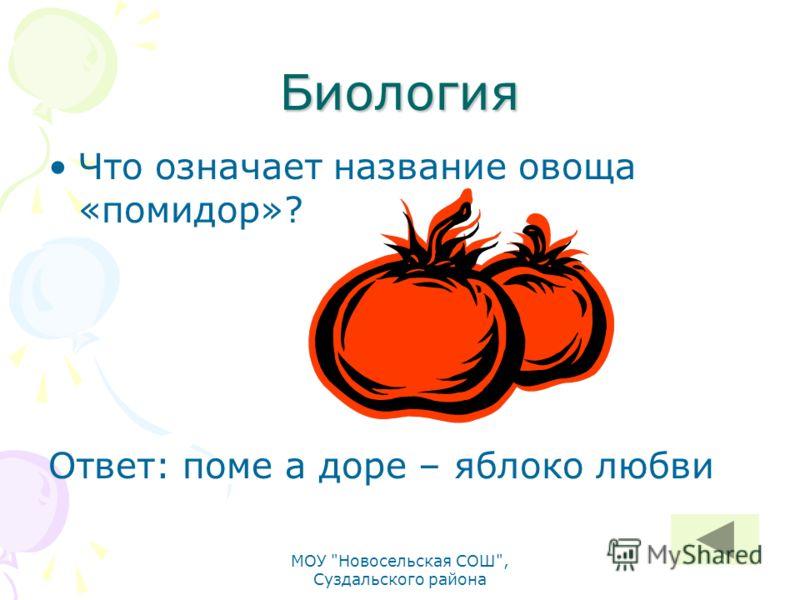 Биология Что означает название овоща «помидор»? Ответ: поме а доре – яблоко любви МОУ Новосельская СОШ, Суздальского района