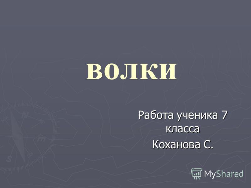 волки Работа ученика 7 класса Коханова С.