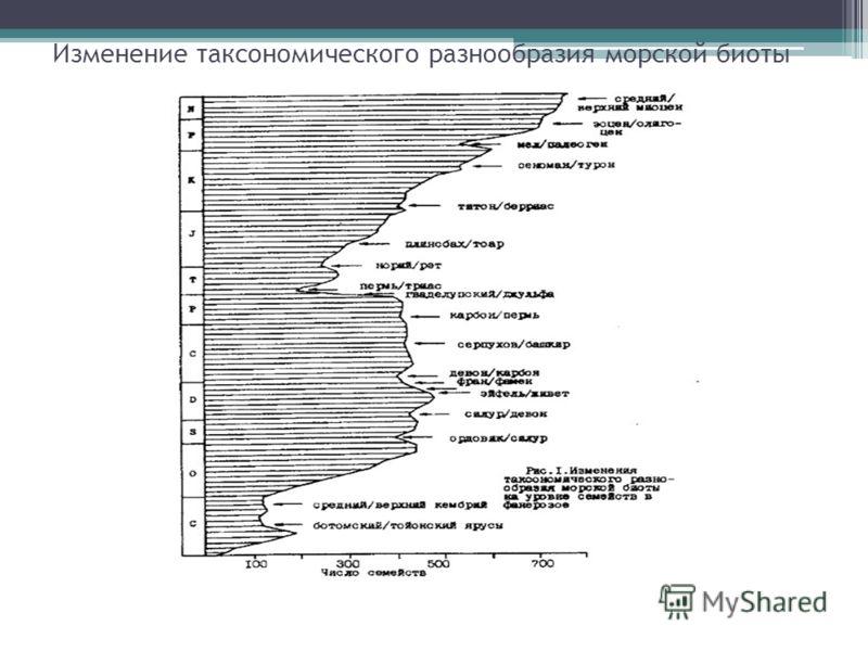 Изменение таксономического разнообразия морской биоты