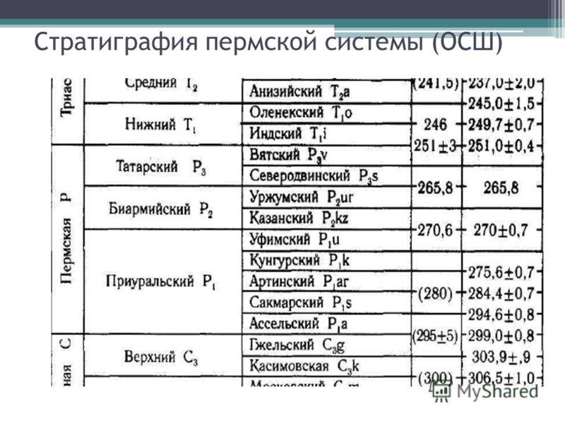 Стратиграфия пермской системы (ОСШ)