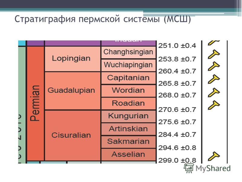 Стратиграфия пермской системы (МСШ)