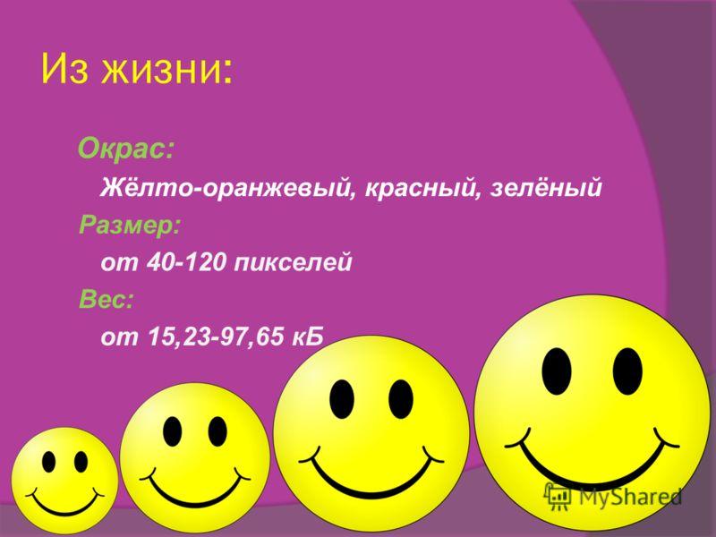 Из жизни: Окрас: Жёлто-оранжевый, красный, зелёный Размер: от 40-120 пикселей Вес: от 15,23-97,65 кБ