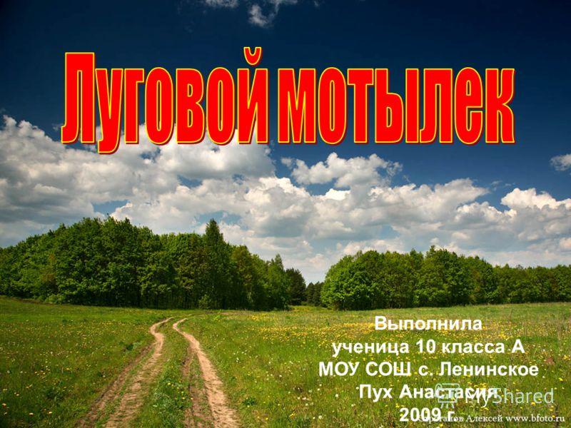 Выполнила ученица 10 класса А МОУ СОШ с. Ленинское Пух Анастасия 2009 г.