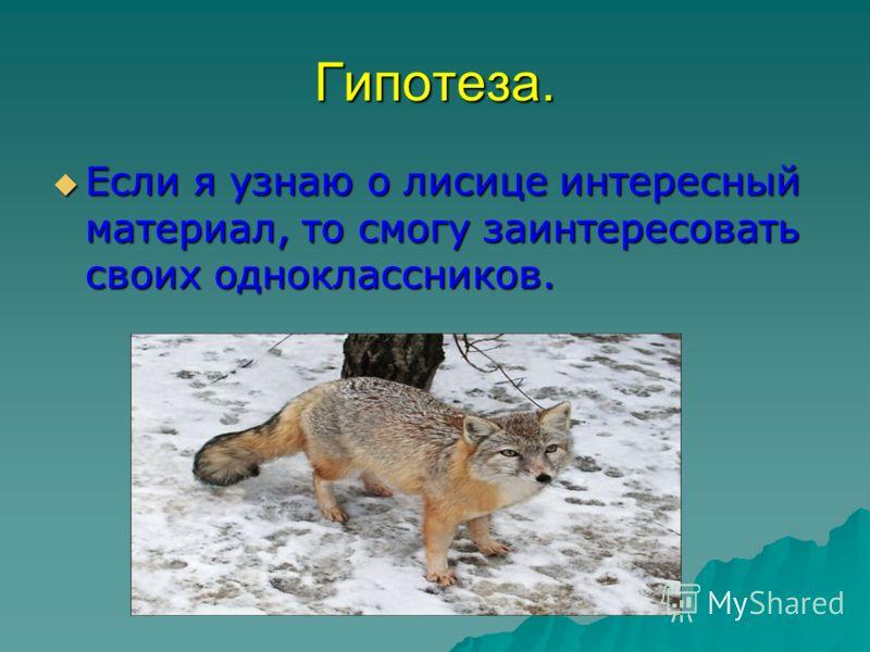 Гипотеза. Если я узнаю о лисице интересный материал, то смогу заинтересовать своих одноклассников. Если я узнаю о лисице интересный материал, то смогу заинтересовать своих одноклассников.