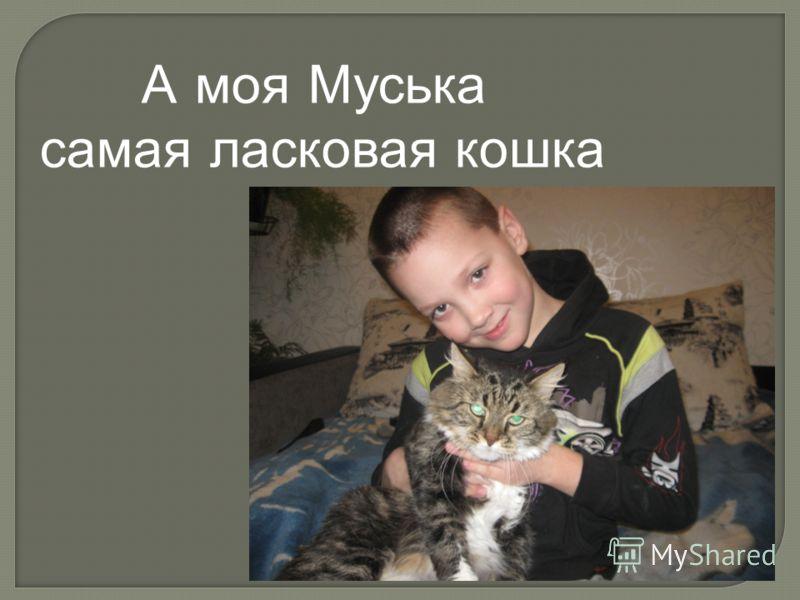 А моя Муська самая ласковая кошка