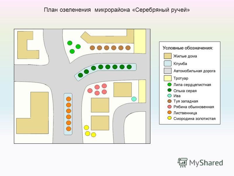 План озеленения микрорайона «Серебряный ручей»