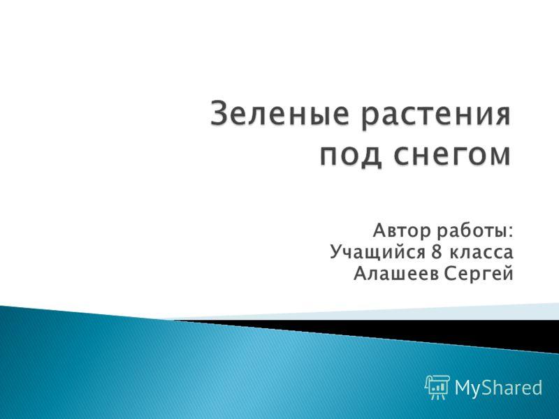 Автор работы: Учащийся 8 класса Алашеев Сергей