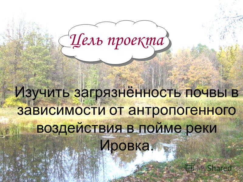 Изучить загрязнённость почвы в зависимости от антропогенного воздействия в пойме реки Ировка. Цель проекта