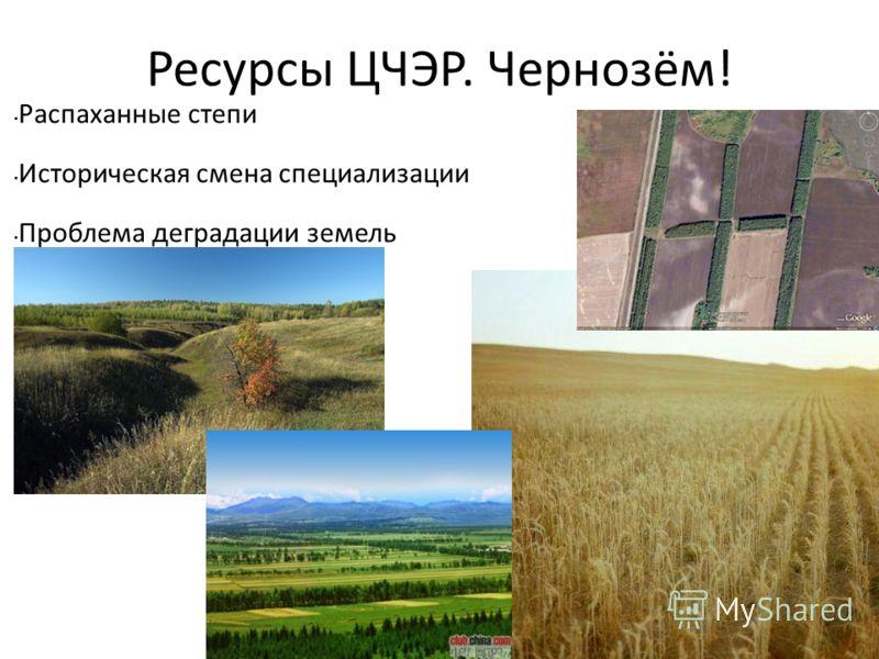 Ресурсы ЦЧЭР. Чернозём! Распаханные степи Историческая смена специализации Проблема деградации земель