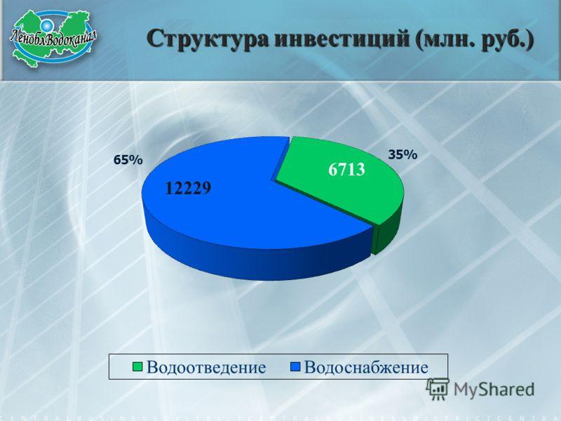 Структура инвестиций (млн. руб.) 6713 12229
