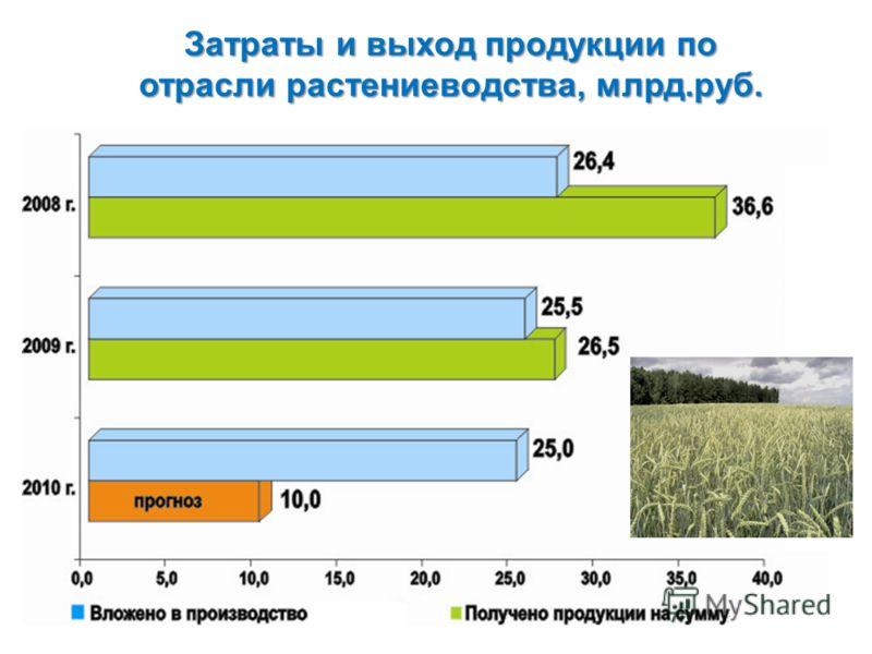 Затраты и выход продукции по отрасли растениеводства, млрд.руб.