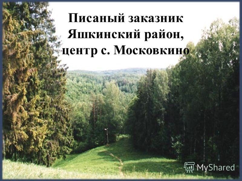 Писаный заказник Яшкинский район, центр с. Московкино