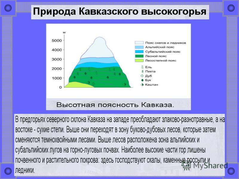Пушкинские горы сочинение