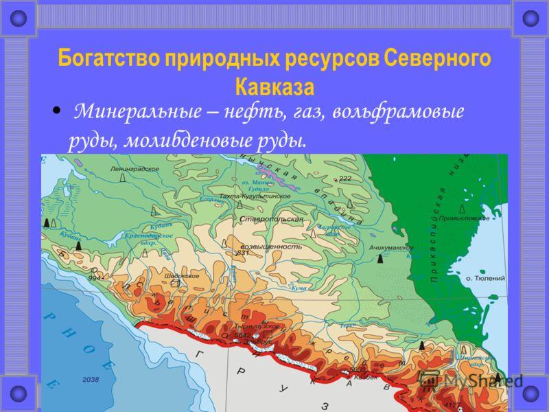 Богатство природных ресурсов Северного Кавказа Минеральные – нефть, газ, вольфрамовые руды, молибденовые руды.
