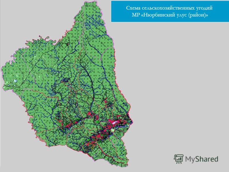 Схема сельскохозяйственных угодий МР «Нюрбинский улус (район)»