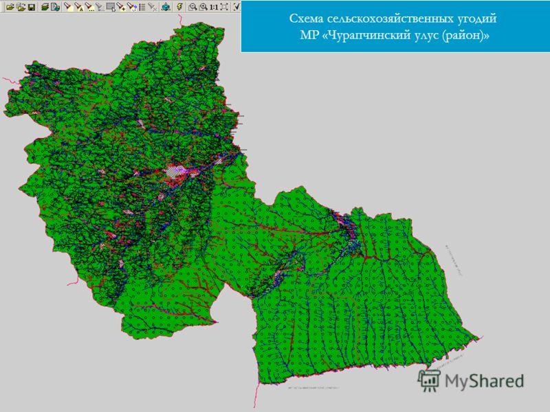 Схема сельскохозяйственных угодий МР «Чурапчинский улус (район)»