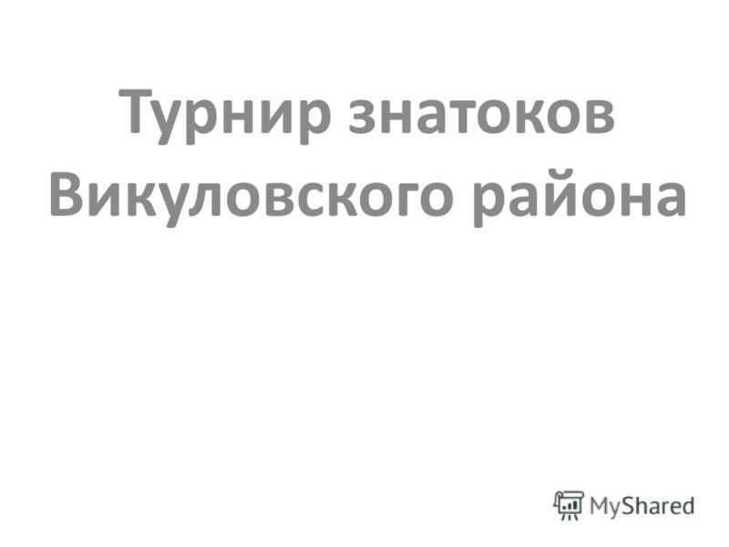 Турнир знатоков Викуловского района