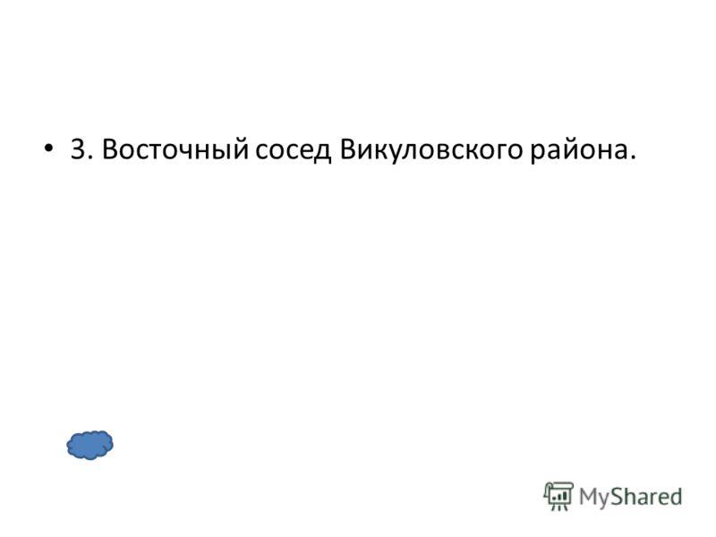 3. Восточный сосед Викуловского района.