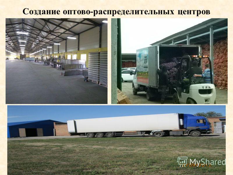 Создание оптово-распределительных центров