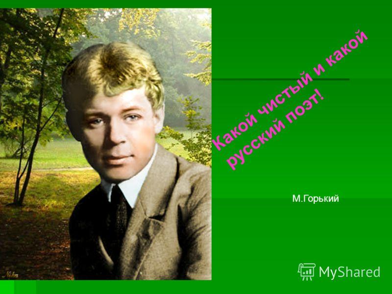 Какой чистый и какой русский поэт! М.Горький