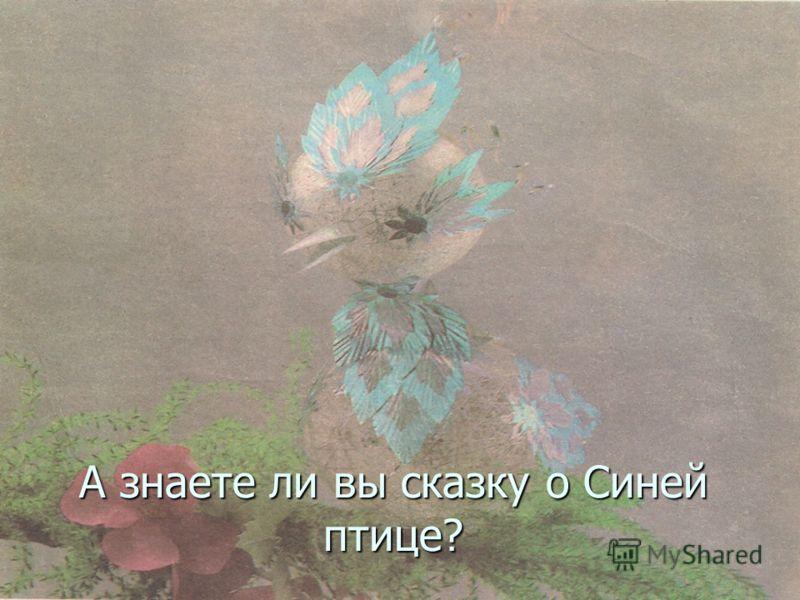 А знаете ли вы сказку о Синей птице?