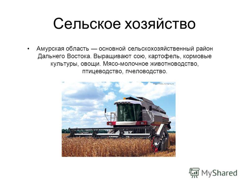 Сельское хозяйство Амурская область основной сельскохозяйственный район Дальнего Востока. Выращивают сою, картофель, кормовые культуры, овощи. Мясо-молочное животноводство, птицеводство, пчеловодство.