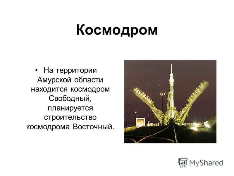 Космодром На территории Амурской области находится космодром Свободный, планируется строительство космодрома Восточный.