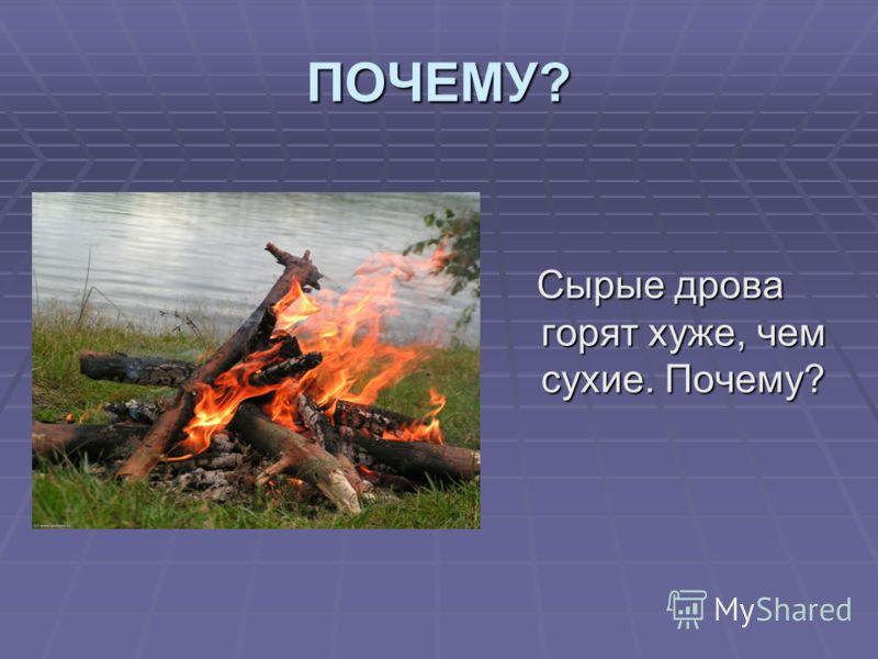 ПОЧЕМУ? Сырые дрова горят хуже, чем сухие. Почему? Сырые дрова горят хуже, чем сухие. Почему?