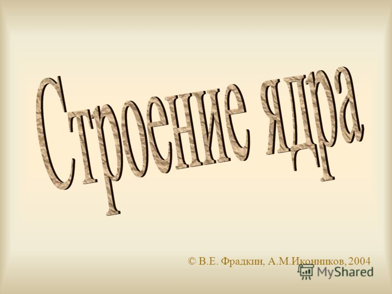 © В.Е. Фрадкин, А.М.Иконников, 2004