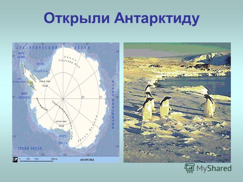 Открыли Антарктиду