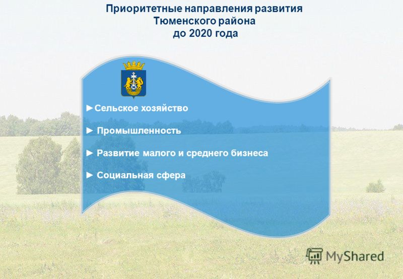 Приоритетные направления развития Тюменского района до 2020 года Сельское хозяйство Промышленность Развитие малого и среднего бизнеса Социальная сфера