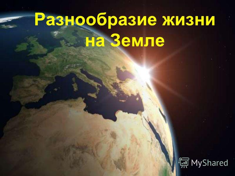 Разнообразие жизни на Земле