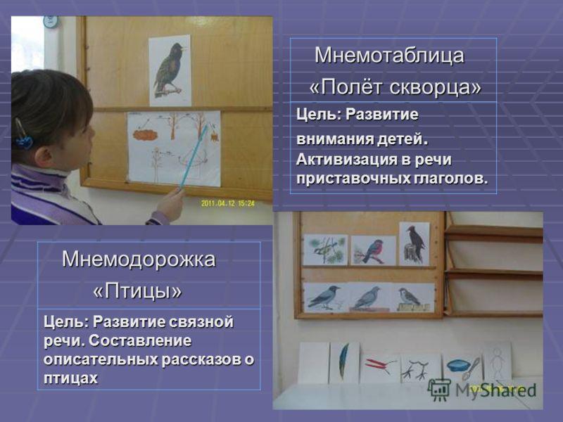 Мнемотаблица Мнемотаблица «Полёт скворца» «Полёт скворца» Цель: Развитие внимания детей. Активизация в речи приставочных глаголов. Мнемодорожка Мнемодорожка «Птицы» «Птицы» Цель: Развитие связной речи. Составление описательных рассказов о птицах