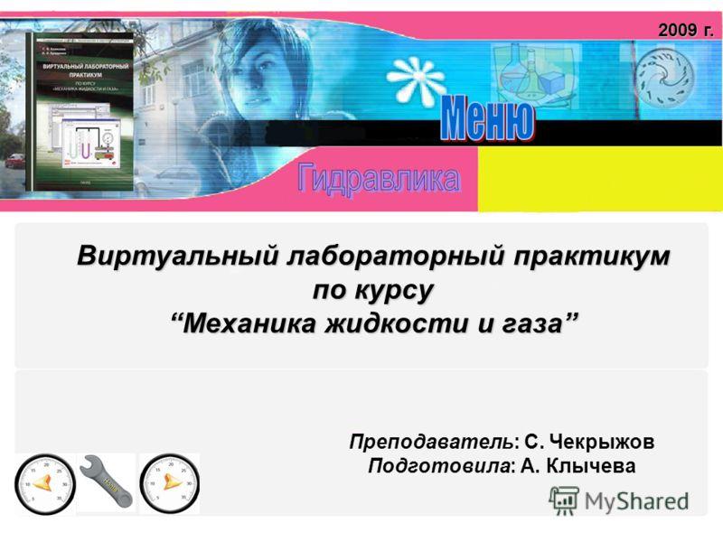 Виртуальный лабораторный практикум по курсуМеханика жидкости и газа Преподаватель: С. Чекрыжов Подготовила: А. Клычева 2009 г.