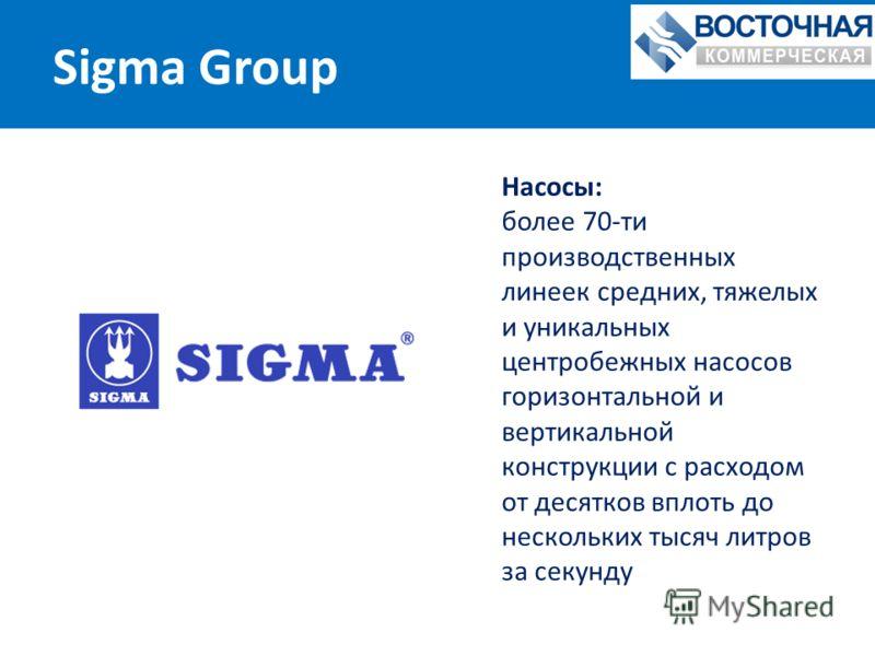 Sigma Group Насосы: более 70-ти производственных линеек средних, тяжелых и уникальных центробежных насосов горизонтальной и вертикальной конструкции с расходом от десятков вплоть до нескольких тысяч литров за секунду