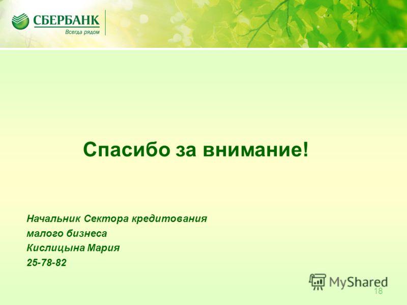 18 Спасибо за внимание! Начальник Сектора кредитования малого бизнеса Кислицына Мария 25-78-82