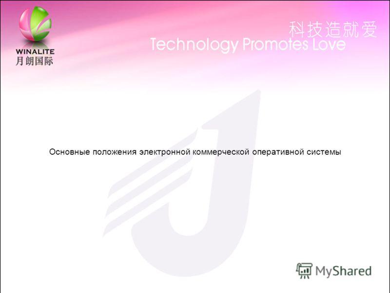 Основные положения электронной коммерческой оперативной системы