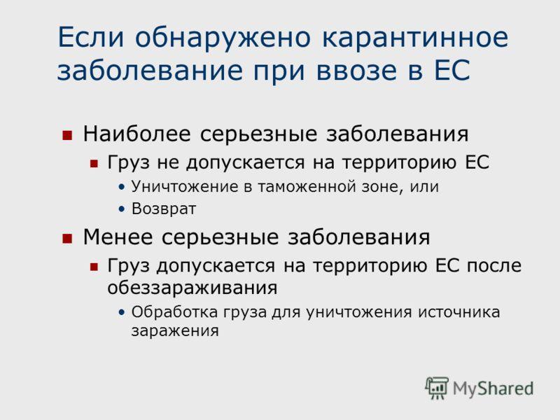 Если обнаружено карантинное заболевание при ввозе в ЕС Наиболее серьезные заболевания Груз не допускается на территорию ЕС Уничтожение в таможенной зоне, или Возврат Менее серьезные заболевания Груз допускается на территорию ЕС после обеззараживания