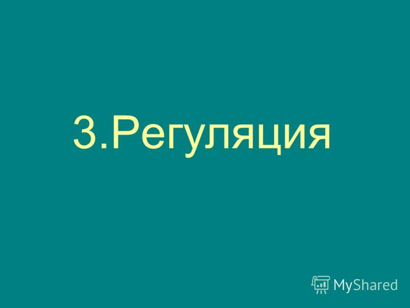 3.Регуляция