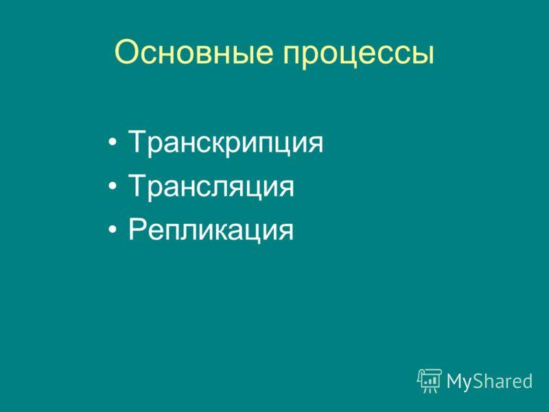 Основные процессы Транскрипция Трансляция Репликация
