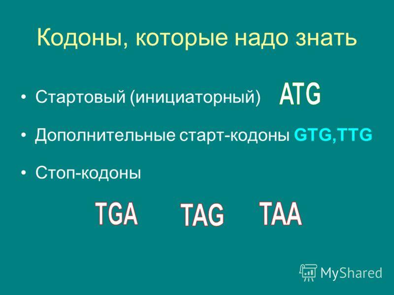 Кодоны, которые надо знать Стартовый (инициаторный) Дополнительные старт-кодоны GTG,TTG Стоп-кодоны