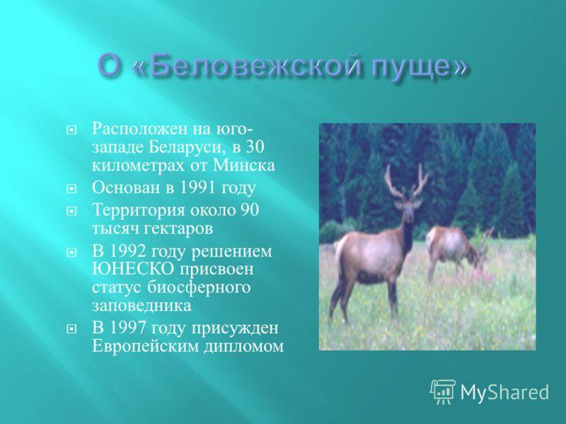Расположен на юго - западе Беларуси, в 30 километрах от Минска Основан в 1991 году Территория около 90 тысяч гектаров В 1992 году решением ЮНЕСКО присвоен статус биосферного заповедника В 1997 году присужден Европейским дипломом