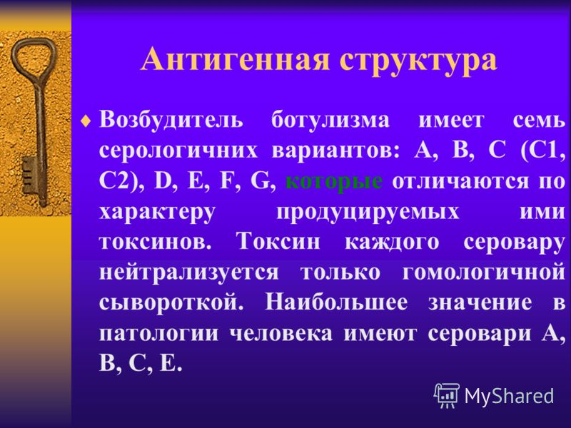 Антигенная структура Возбудитель ботулизма имеет семь серологичних вариантов: А, В, С (С1, С2), D, E, F, G, которые отличаются по характеру продуцируемых ими токсинов. Токсин каждого серовару нейтрализуется только гомологичной сывороткой. Наибольшее
