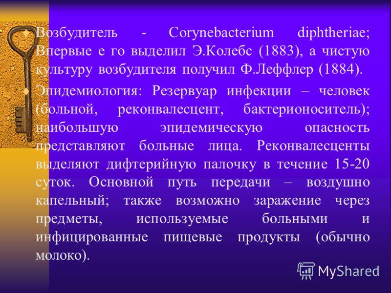 Возбудитель - Corynebacterium diphtheriae; Впервые е го выделил Э.Колебс (1883), а чистую культуру возбудителя получил Ф.Леффлер (1884). Эпидемиология: Резервуар инфекции – человек (больной, реконвалесцент, бактерионоситель); наибольшую эпидемическую